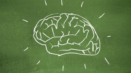 Brainpower for coaches